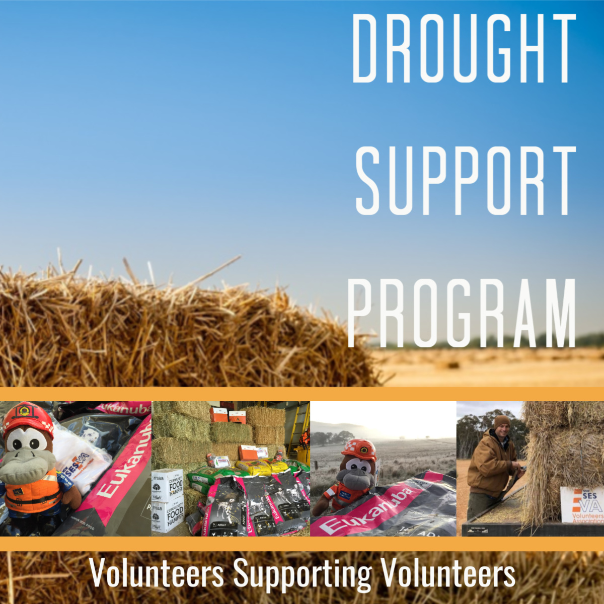 Drought Support Program - Get Involved. Donate Today